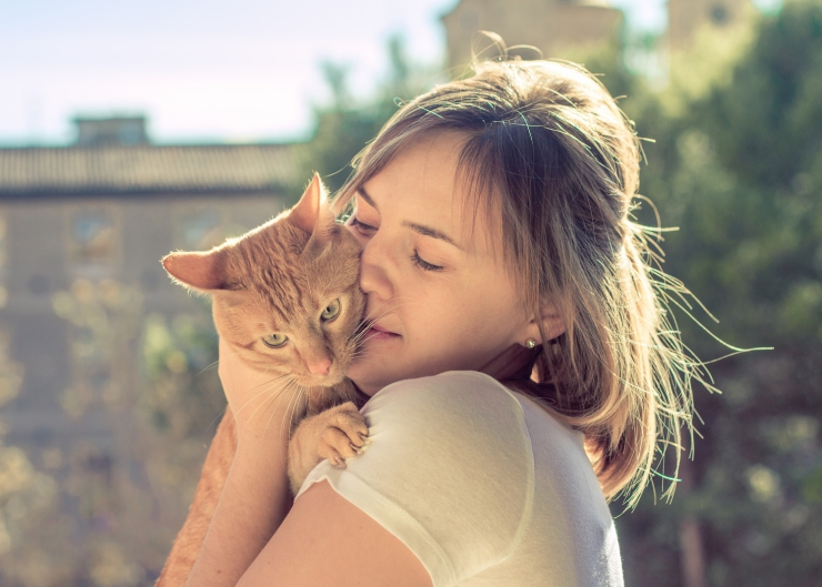 How risky is it to kiss your cat? Should you kiss your cat on the lips? We answer these questions and more...| Is it Safe to Kiss Your Cat?