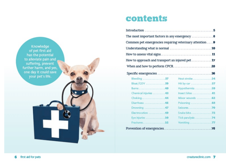 Creature Clinic's Pet First Aid Kid for Small Dogs and Cats