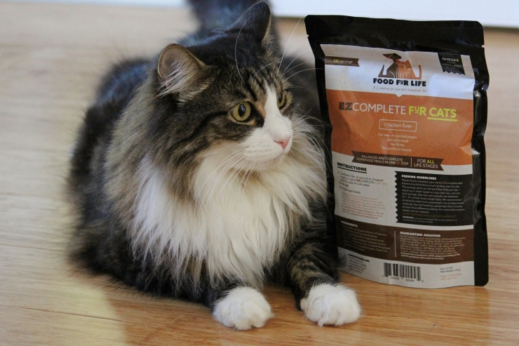 EZComplete raw cat food premix