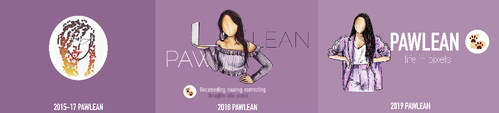 The Pawlean brand over time. My current brand identity was created by Teecaake.