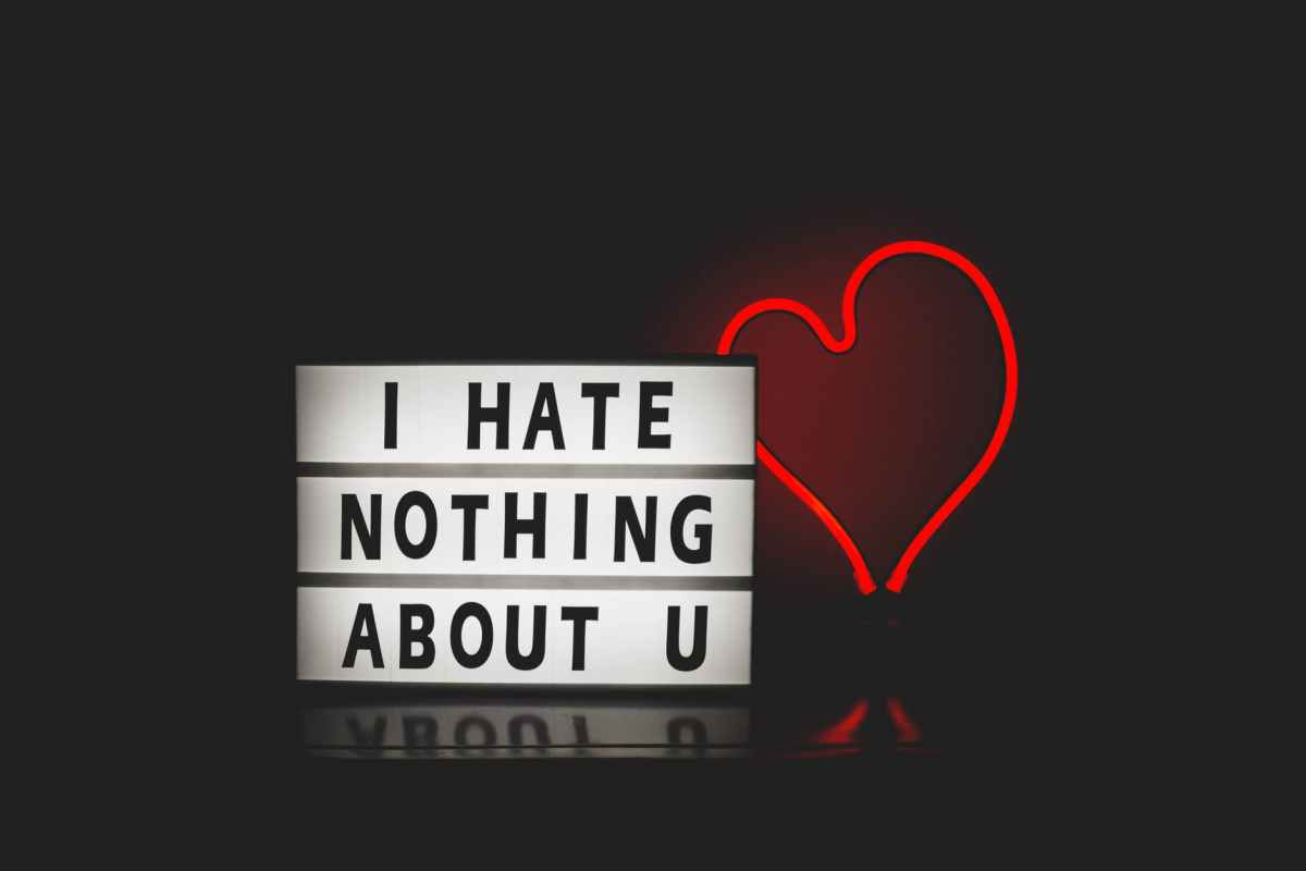i hate nothing about you with red heart light. What is love