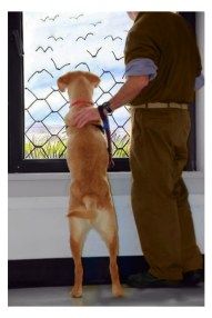 inmate and dog photo