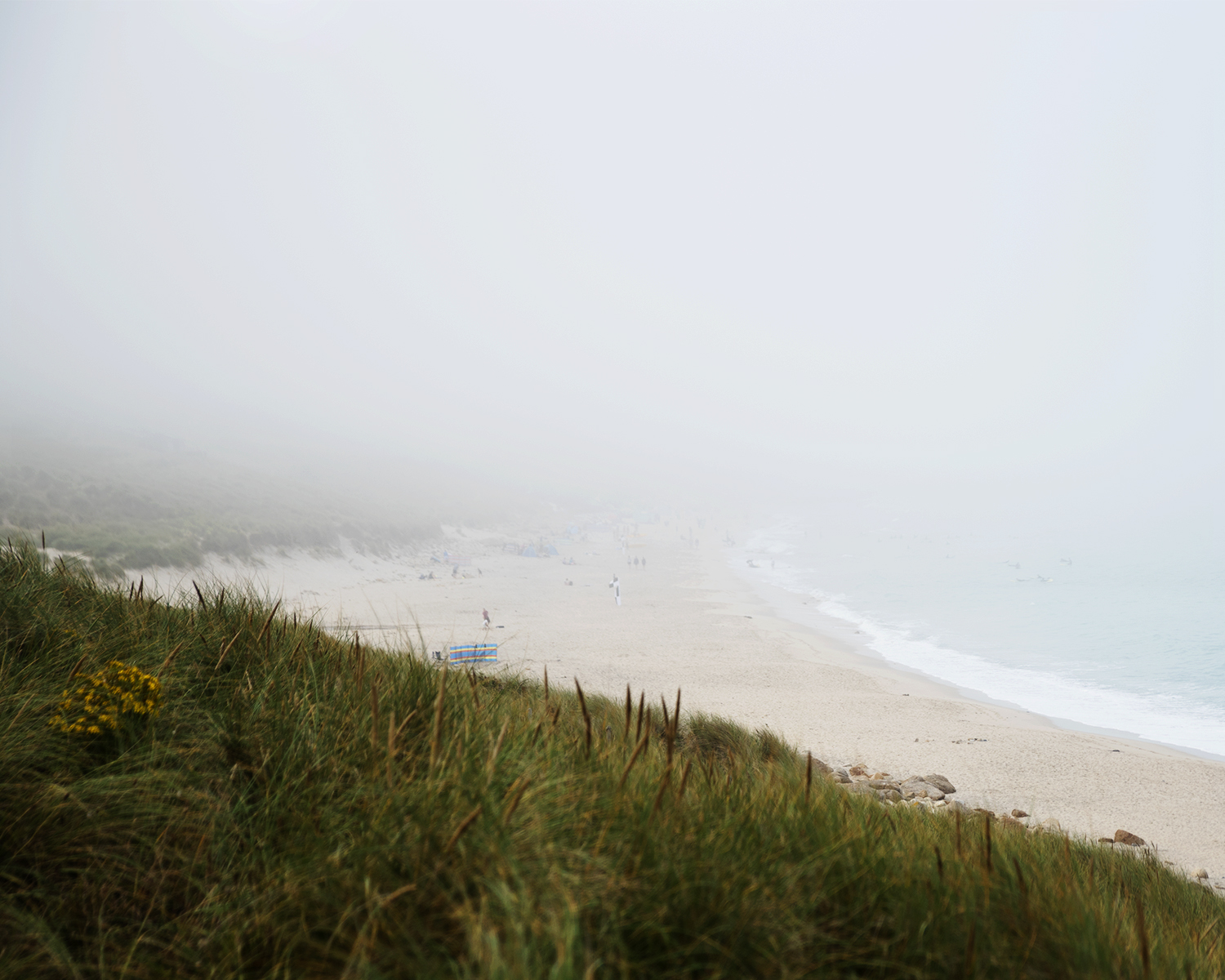 Sennen Cove in Fog | Paws and Tors