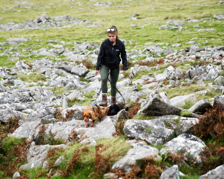 Hiking Roughtor and Brown Willy | Paws and Tors