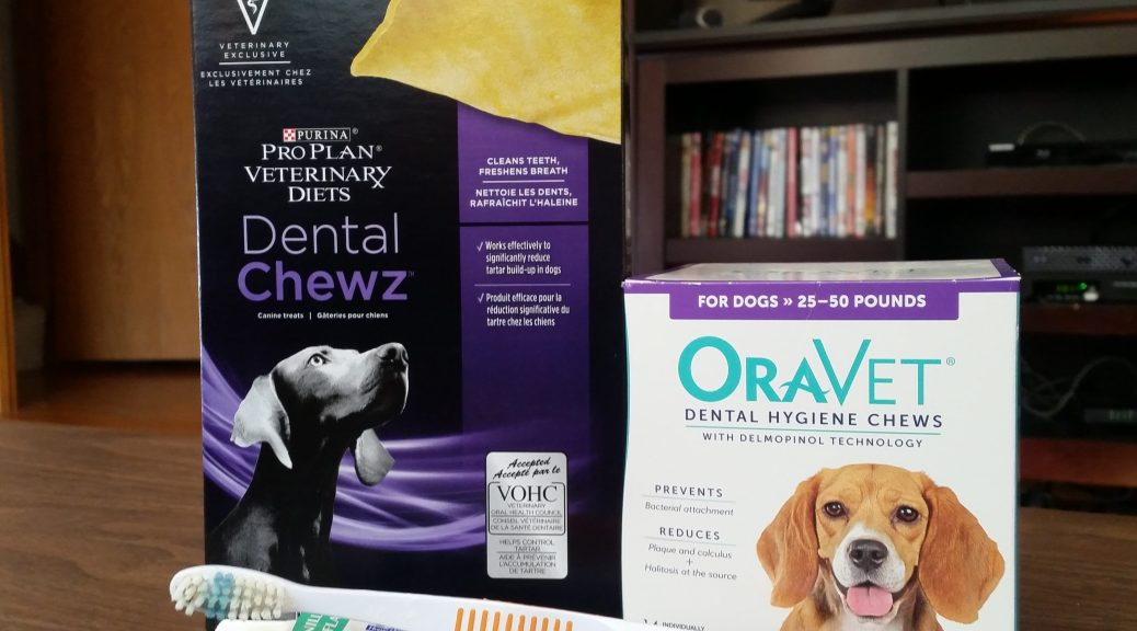 Dog dental products