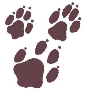 Logo (Red Paws background)