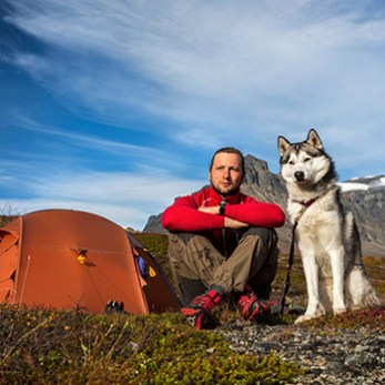 Go Wilderness Camping With Your Dog
