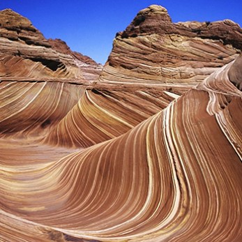 Hiking Coyote Buttes & The Wave With Your Dog