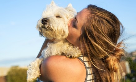 Why Pets Make Great Therapists