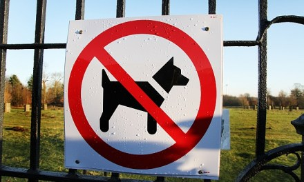 Do City-Wide Biting Breed Bans Work?
