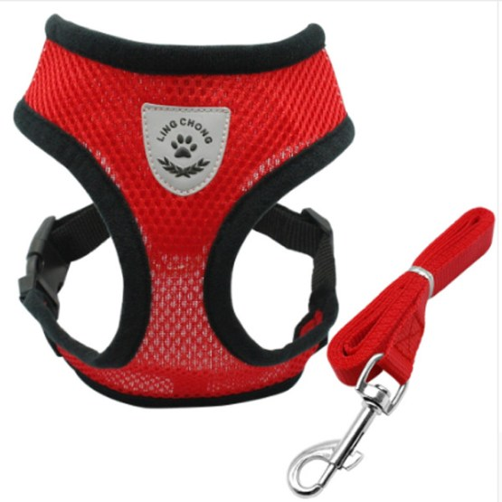 Dog Harness Leash 2