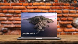 Read more about the article Microsoft Word Users Are Incensed Over Apple's New Catalina OS