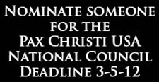 Nominate someone for National Council!