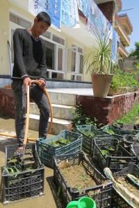 Nisar Works in the Centre Garden (1)