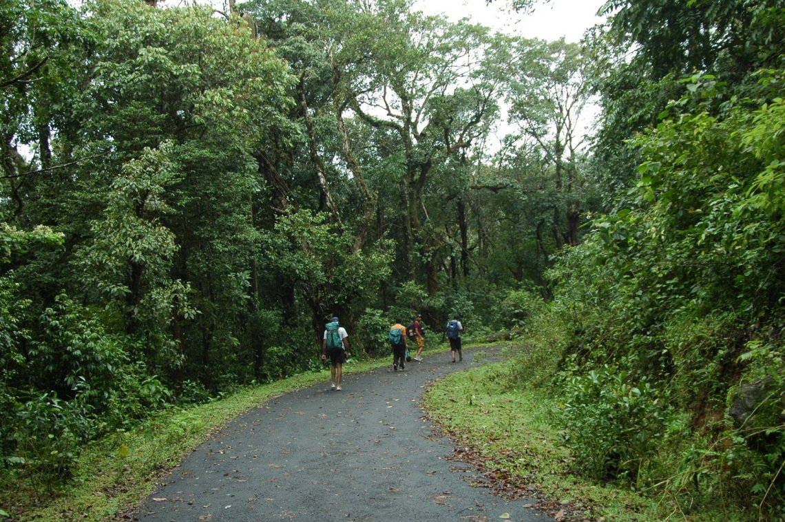 Unfinished trek to Kumara Parvata