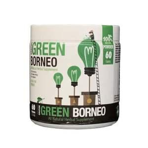 Bumble Bee Kratom Powder - Green Borneo - 60grams