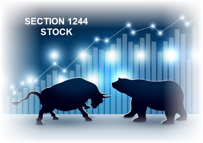 Section 1244 Stock