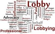 Professional Lobbyists