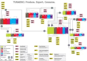 Turmeric Distribution Diagram  AtelierYek