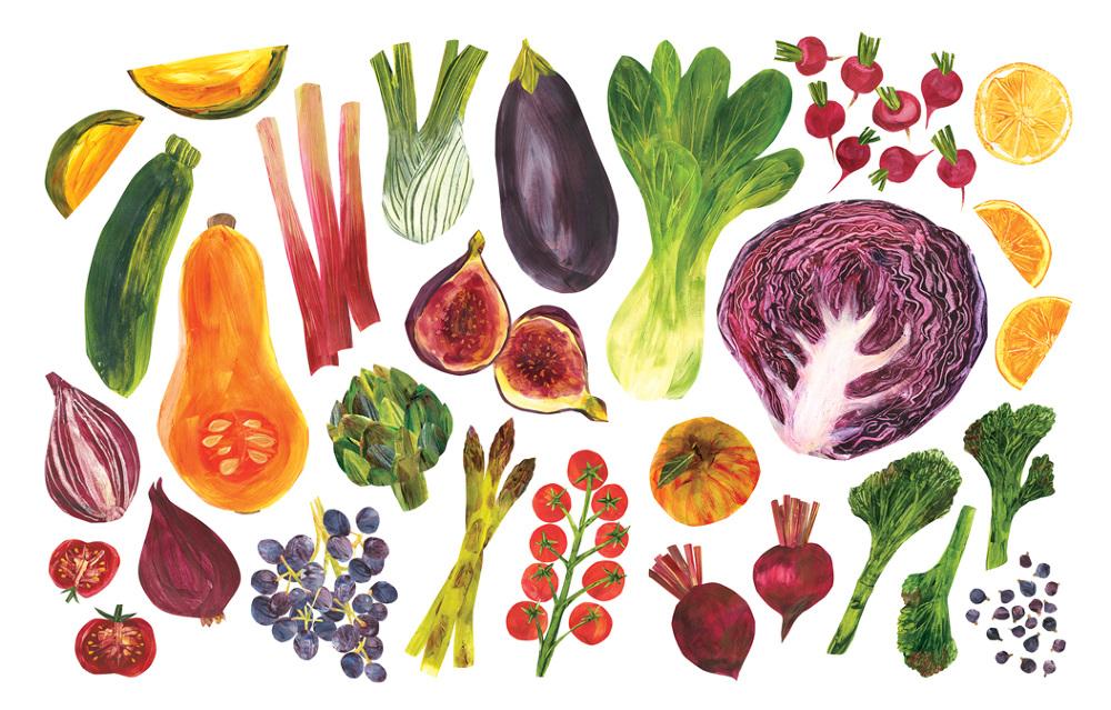 Fruit And Vegetables Rachael Horner Illustration