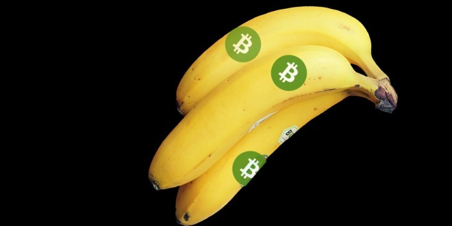 http://paymentsnext.com/traders-go-bananas-for-bitcoin-cash/