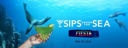 suts-fiesta-1400x525 (1)