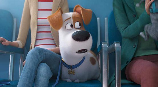 The Secret Life of Pets 2 Trailer