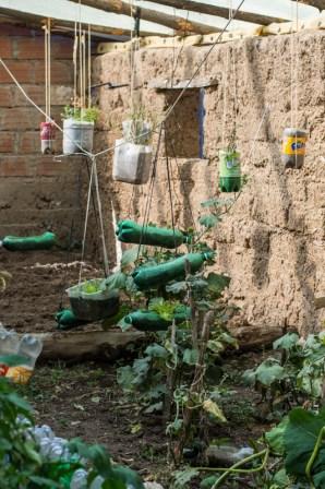 Agriculture urbaine à Sucre - un exemple de serre - http://paysansdavenir.com/agriculture-urbaine-pourquoi-comment-lexemple-de-la-bolivie/