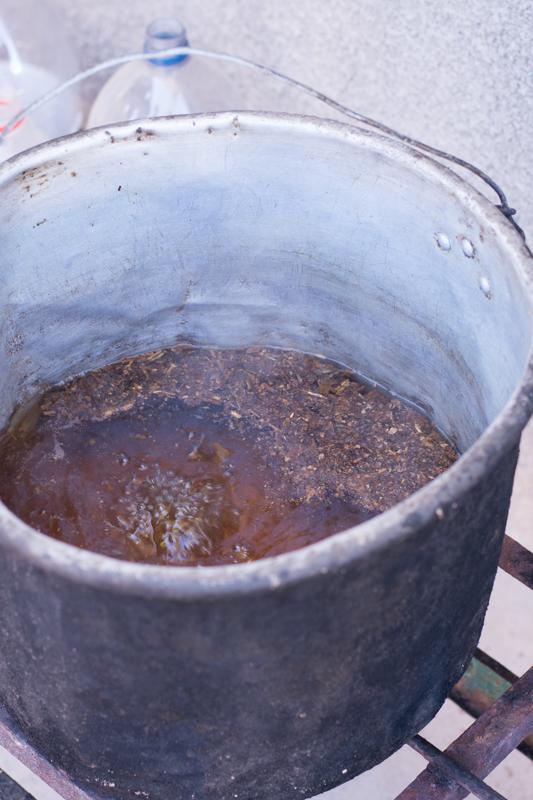 """Agriculture urbaine à Sucre - préparation de pesticides """"bio"""" avec du tabac que l'on fait bouillir et auquel on ajoute du savon rapé - http://paysansdavenir.com/agriculture-urbaine-pourquoi-comment-lexemple-de-la-bolivie/"""