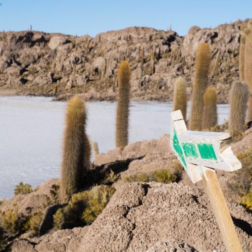 Uyuni - Une île au milieu du désert de sel