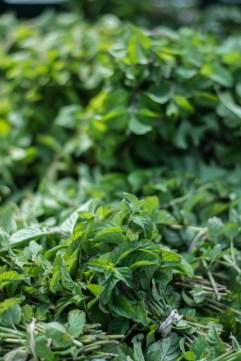 Little Seed Gardens, maraîchage et vente de paniers de légumes : mojito time !