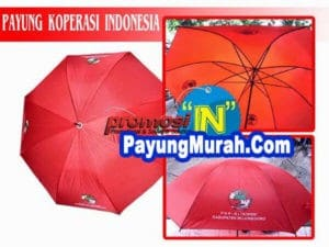 Supplier Payung Promosi Murah Grosir Waropen