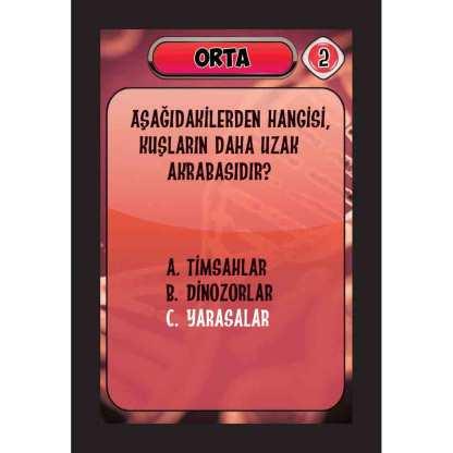 ORTA-2_
