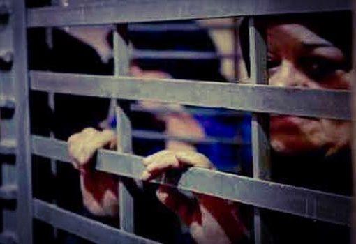 هيئة الأسرى عشية الثامن من آذار: 35 امرأة بينهن 11 أمّا في سجون الاحتلال