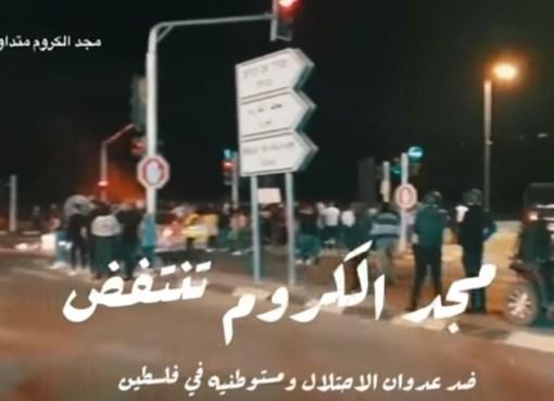 بالفيديو: مجد الكروم تنتفض ضد عدوان الاحتلال ومستوطنيه في فلسطين