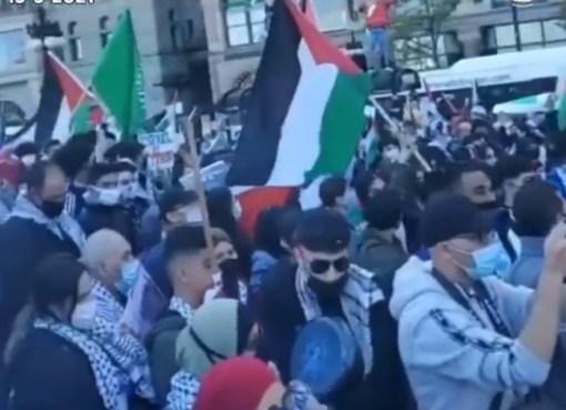 شاهد مظاهرة حاشدة في شيكاغو ضد جرائم الصهيونية في فلسطين ودعما للقدس