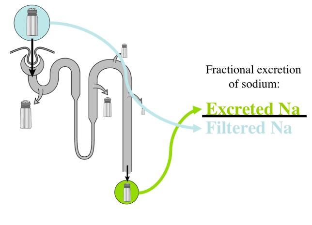Fractional Excretion of Sodium