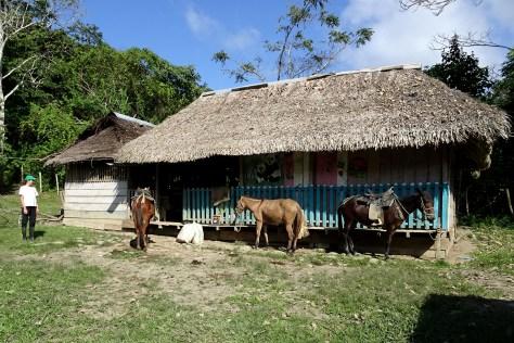Gildardo's house