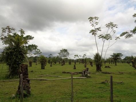 Riosucio, Chocó