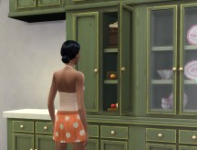 countrykitchen_cupboard-fitted_in-game-03