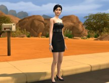 mts_plasticbox-1471864-defaults_dressbelt_ingame