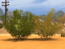 mts_plasticbox-1488948-pbox_liberated-plants-desert_04