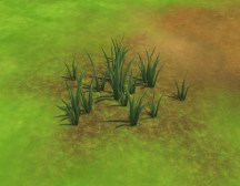 mts_plasticbox-1499294-liberated-grass_04