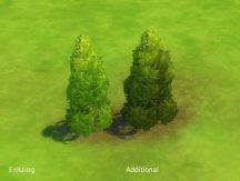 mts_plasticbox-1507724-liberated-shrubs_tall-unkempt
