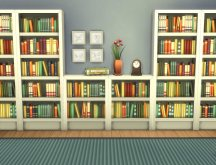 mts_plasticbox-1512077-bookcase-moderate_combo