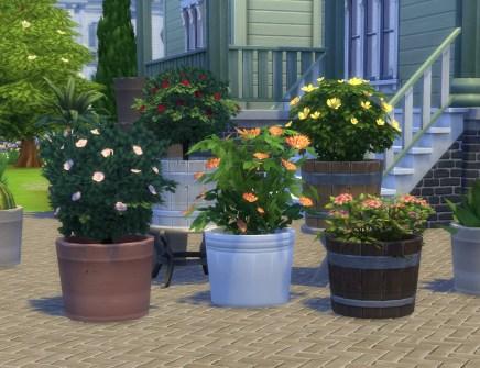 pottable-plants_01