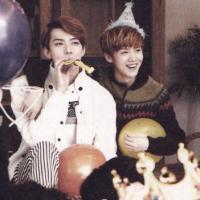2013 EXO Diary - HunHan (Sehun & Luhan)