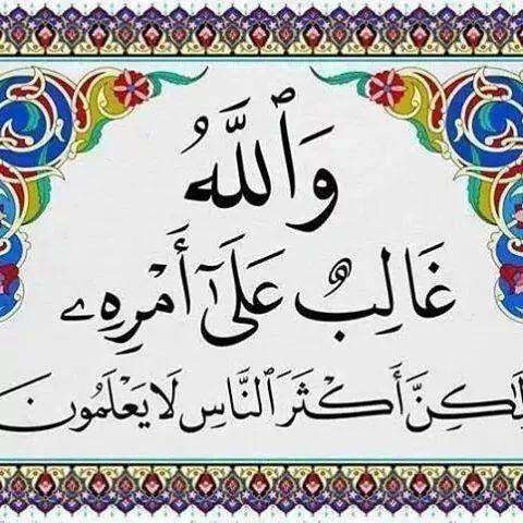 محمد ضحوي العتيبي At Ad4433ad63 Twitter