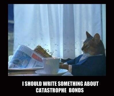 Cat Memes and Cat Bonds: Lessons for the Uninitiated