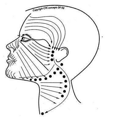test ツイッターメディア - 【小顔になるためにリンパの流し方】顔のリンパマッサージの仕方について参考になる画像☆https://t.co/eNh5cU5Wq2